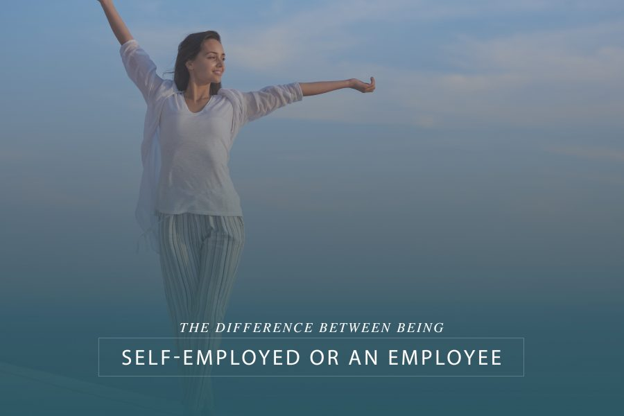 Self-employed vs Employee: Where Did My Taxes Go?